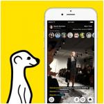 Meerkat, la próxima aplicación de éxito